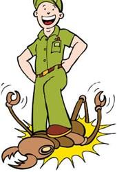 Nemesis Termite Baiting, Sistem Umpan, Pemantauan dan Hapus Anai-Anai
