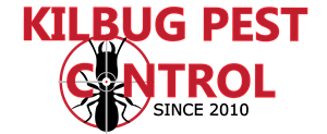 Killbug Pest Control